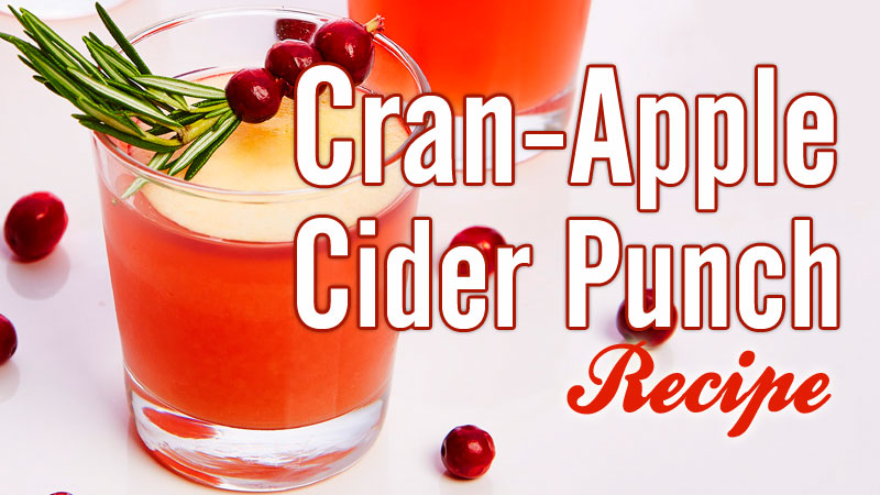 Cranapple Cider Punch recipe